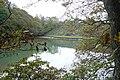 Noss Creek, Long Wood - geograph.org.uk - 79087.jpg