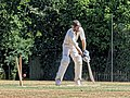Nuthurst CC v. Henfield CC at Mannings Heath, West Sussex, England 025.jpg
