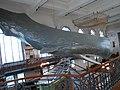 Oceanographic Museum - panoramio (3).jpg