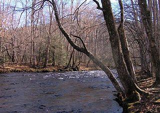 Oconaluftee (Great Smoky Mountains) River in North Carolina, USA