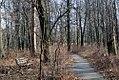 Ojibway - xmas 2011 (6577852751).jpg