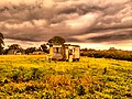 Old Shed at Old farm in Cottle's Bridge near Melbourne - panoramio.jpg