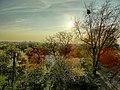Opole, Poland - panoramio (117).jpg
