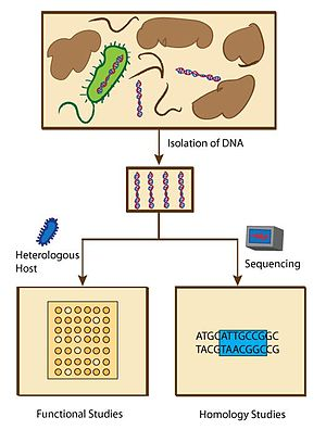 Chemical biology - Overview of metagenomic methods