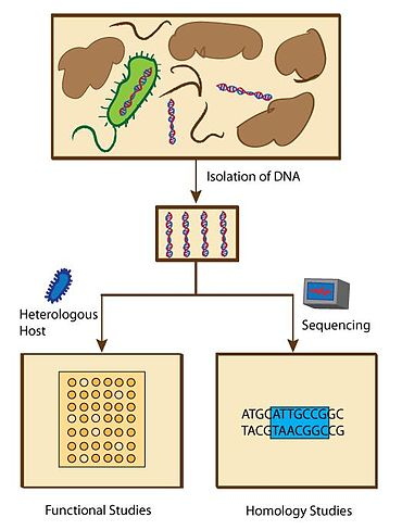 Overview of metagenomic methods