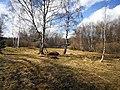 Přírodní památka Tesařov18.jpg
