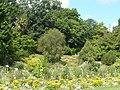P1030229 le jardin des plantes a Caen.JPG