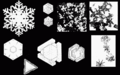 PSM V53 D090 Various snow crystal forms.png