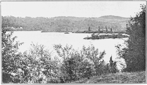PSM V79 D310 Series of floating islands on sadawga lake whitingham vt.png