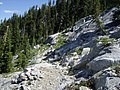 Pacific Crest Trail near Taylor Lake - panoramio.jpg