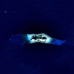 Palmyra Atoll.png