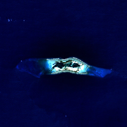 Palmyra Atoll - NASA NLT Landsat 7 (Visible Color) Satellite Image
