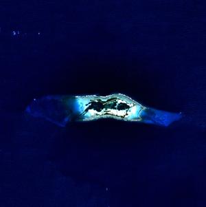 Satellitenbild des Palmyra-Atolls