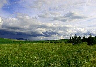 Moscow, Idaho - Palouse Hills