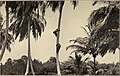 Panama; a personal record of forty-six years, 1861-1907 (1907) (14760632325).jpg