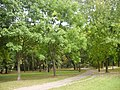 Park Centralny (Białystok).JPG