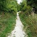 Path near Cherhill 01.jpg