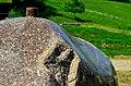 Pedvāle open air museum. Ziedoņa akmens - Ziedoņa stone - panoramio (2).jpg
