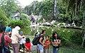 Pelican Pond Ragunan Zoo.jpg