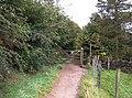 Pennine Bridleway, Holly Grove - geograph.org.uk - 569023.jpg