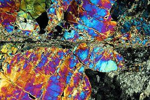 Mylonite - Periodotitic mylonite in a petrographic microscope