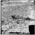 Petersburg, Virginia. Dead Confederate soldier in trenches of Fort Mahone LOC cwpb.03606.tif