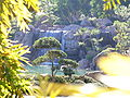 Phoenix AZ Ro Ho En Japanese Friendship Garden 50990.JPG