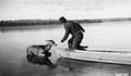 Photograph of Game Warden Trying to Loosen Rope - NARA - 2128494.tif
