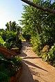Phu Chai Sai Resort Wege - panoramio.jpg