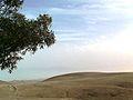 PikiWiki Israel 16101 Arad.jpg