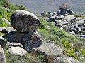 Por el berrocal de la sierra de Eljas - Piedra caballera 4.jpg
