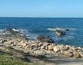 Porto Torres pesca.jpg
