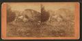 "Position occupied by a rebel sharpshooter in rear of ""Devil's Den,"" and the place he lost his life, from Robert N. Dennis collection of stereoscopic views.png"