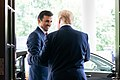 President Trump Meets with the Amir of Qatar (48244264556).jpg