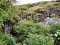 Prince of Wales Quarry - geograph.org.uk - 443231.jpg