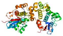 Protein DSP PDB 1lm5.png