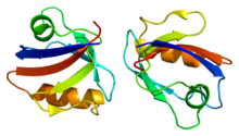 Protein RGS3 PDB 2f5y.png