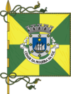 Flag of Figueira da Foz