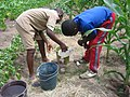 Pupils preparing urine and water mix (5568156182).jpg