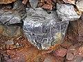 Pyrite atop chert nodule (Delaware Limestone, Middle Devonian; Emerald Parkway roadcut, Dublin, Ohio, USA) 4 (42189091231).jpg