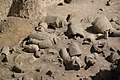 Qin Shihuang Terracotta Warriors Pit (14184824690).jpg