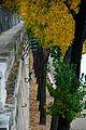 Quai des Tuileries (2368402449).jpg