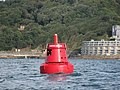 Queen's Ground port hand buoy - geograph.org.uk - 1476887.jpg