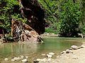 Quiet Space, Riverside Walk, Zion NP 5-1-14f (14090823646).jpg