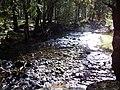 Río Eresma, sol y agua, Sendero de los Reales Sitios, San Ildefonso, Segovia, España, 2014.jpg