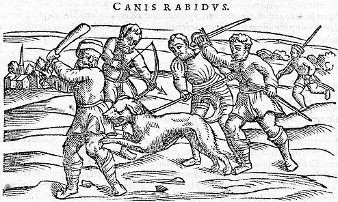 Illustration shows a group of men attempting to kill a rabid dog. The men are using various weapons including a club, bow and arrow, and a sword. The dog is biting the leg of the man on the far left.