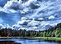 Ramensky District, Moscow Oblast, Russia - panoramio - Andris Malygin (22).jpg