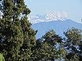Ravangla, Sikkim by Masum Ibn Musa (144).jpg