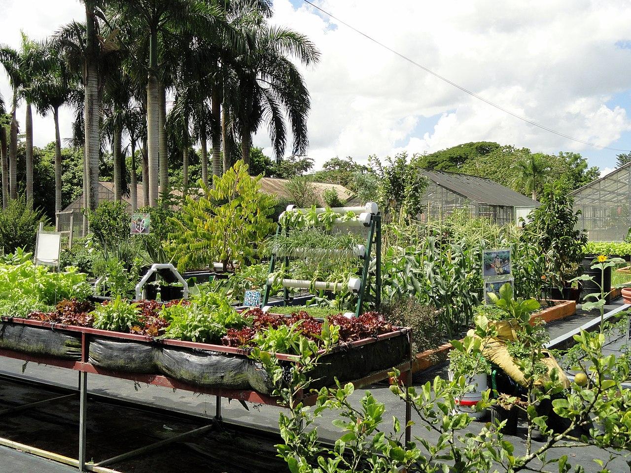 File research garden san juan botanical garden for Study landscape design