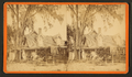 Residence of Harriet Beecher Stowe at Mandarin, Florida, from Robert N. Dennis collection of stereoscopic views.png